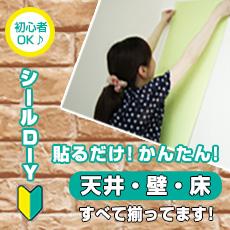 DIYシール特集!売れ筋商品ピックアップ