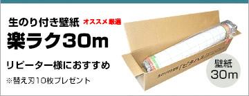 楽ラク30m7200円